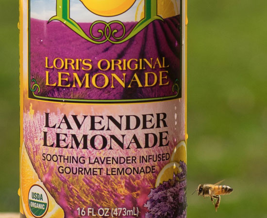 lori-original-lemonade-organic-photos1